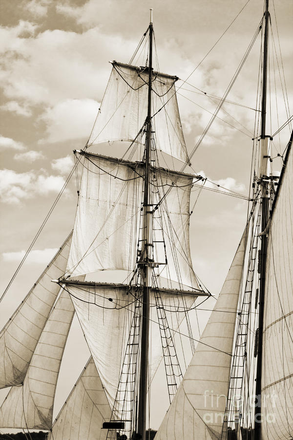Brigantine Tallship Fritha Sails And Rigging Photograph  - Brigantine Tallship Fritha Sails And Rigging Fine Art Print