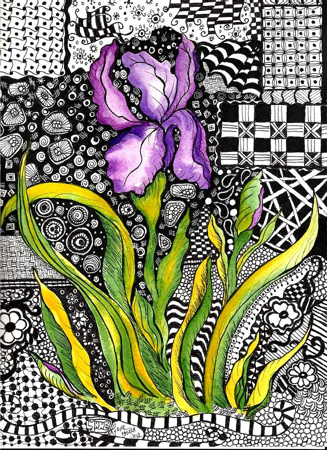 Bright Iris Drawing  - Bright Iris Fine Art Print