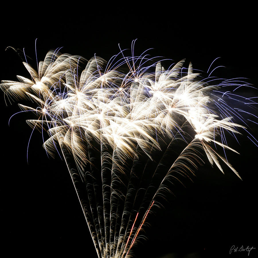 Bright Lights Photograph  - Bright Lights Fine Art Print