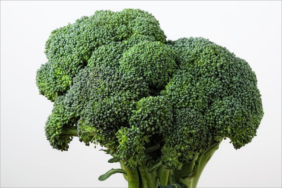 Broccoli Photograph