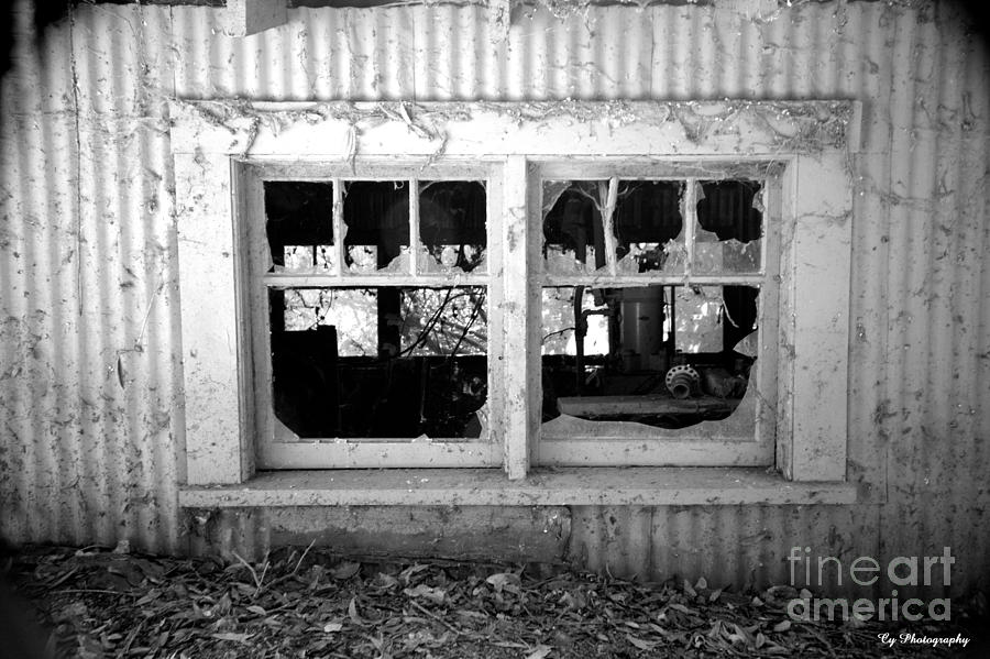 Broken Windows Photograph  - Broken Windows Fine Art Print