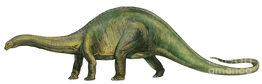 brontosaurus-a-prehistoric-era-sergey-krasovskiy.jpg