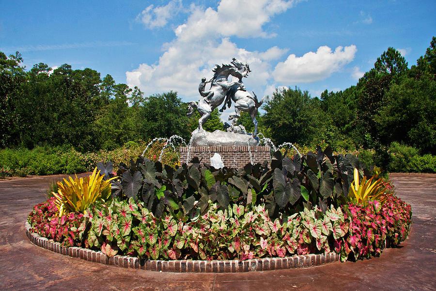 brookgreen-gardens-entrance-kelley-nelson.jpg