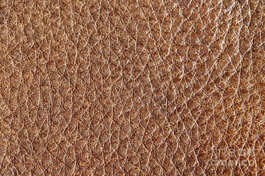 Brown Leather Grain Photograph  - Brown Leather Grain Fine Art Print