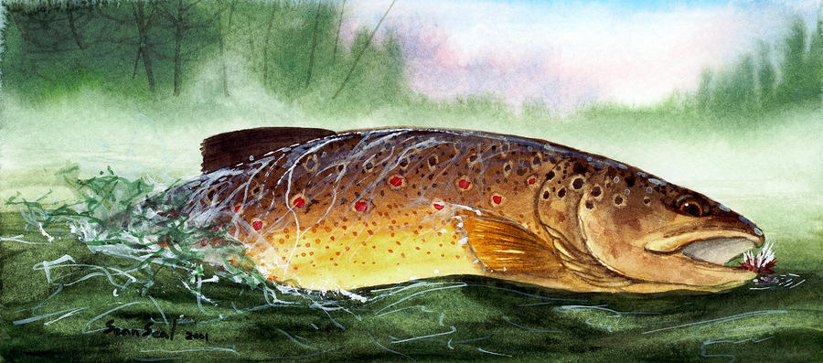 Brown Trout Taking A Fly Painting  - Brown Trout Taking A Fly Fine Art Print