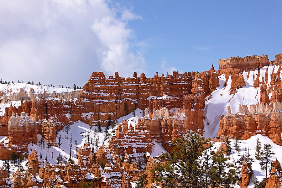 Bryce Canyon Castles Photograph