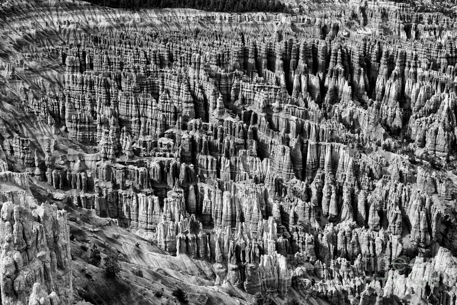 Bryce Canyon National Park Lll Photograph