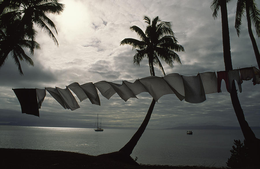 Buca Bay, Laundry And Palm Trees Photograph