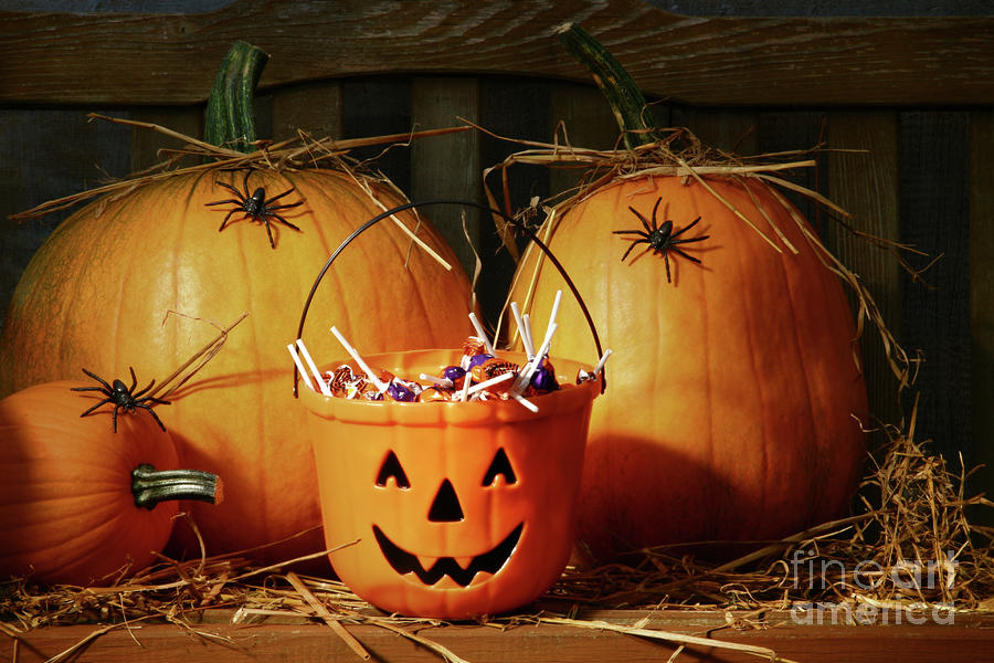 Bucket Filled With Halloween Candy Photograph  - Bucket Filled With Halloween Candy Fine Art Print