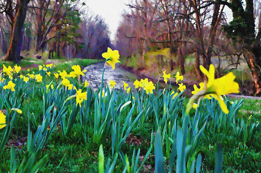 Bucks County Spring Photograph - Bucks County Spring by Bill Cannon