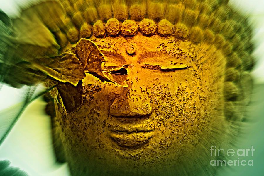 Buddha In Deep Meditation Photograph