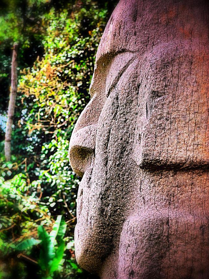 Buddha Nature Photograph - Buddha Nature by Skip Hunt
