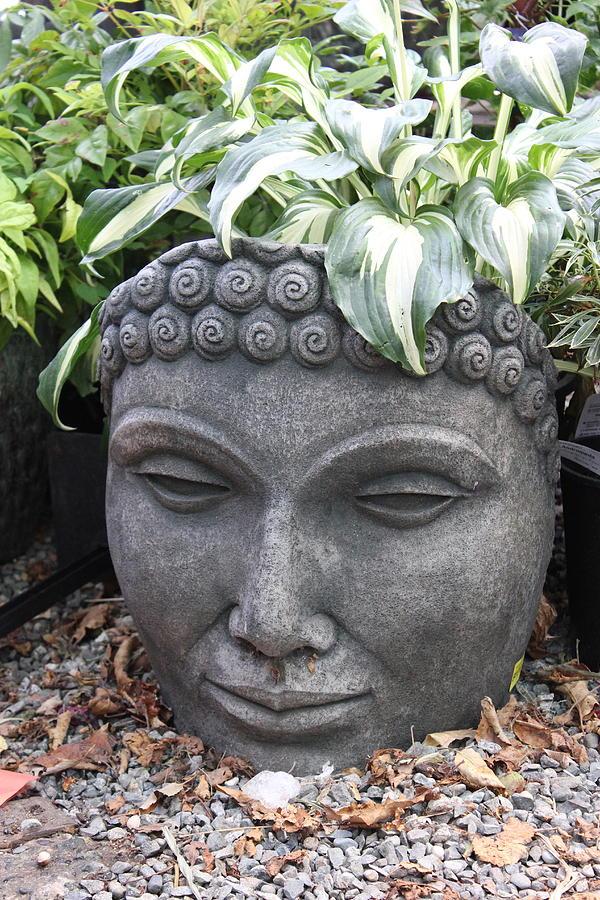 Buddha On A Hot Summer Island Day Photograph