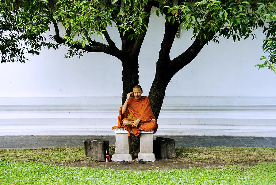 Buddhist Monk Sits Under Tree Photograph