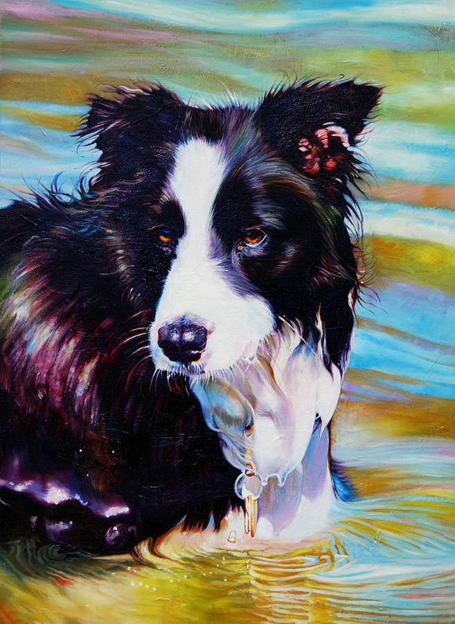Buddy Border Collie Painting  - Buddy Border Collie Fine Art Print