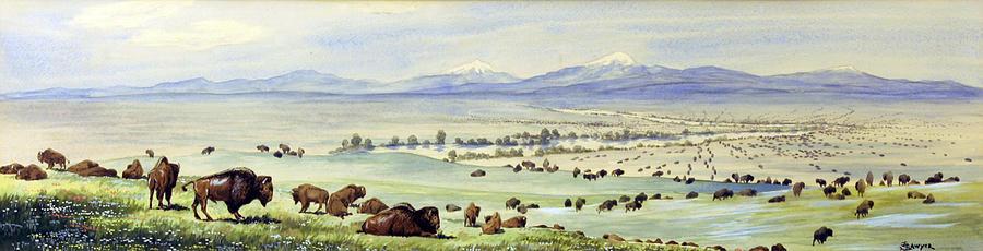 Buffalo Coming To Water. Watercolor Photograph