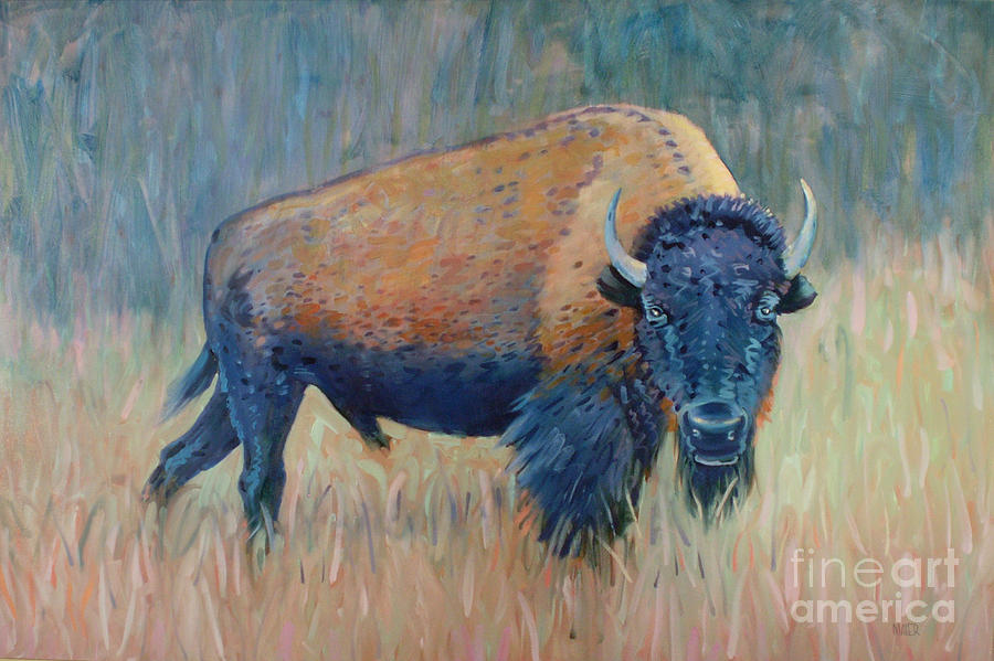 Buffalo Grazing Painting  - Buffalo Grazing Fine Art Print