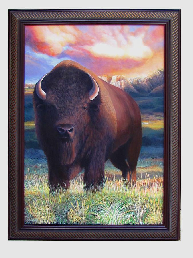 Buffalo Spring...coming Of Age Painting