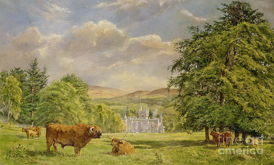 Landscape; Highland Cattle; Angus; Cow; Royal Residence;scottish Baronial; Horn; Horns Park; Bulls; Bull; Balmoral Castle; Balmoral; Hill; Hills; Tree; Trees; Grass; Green; Scottish Painting - Bulls At Balmoral by Tim Scott Bolton