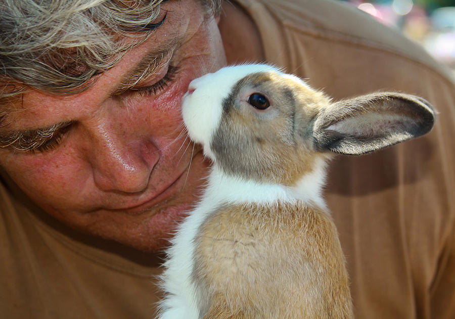 Bunny Kisses Photograph  - Bunny Kisses Fine Art Print
