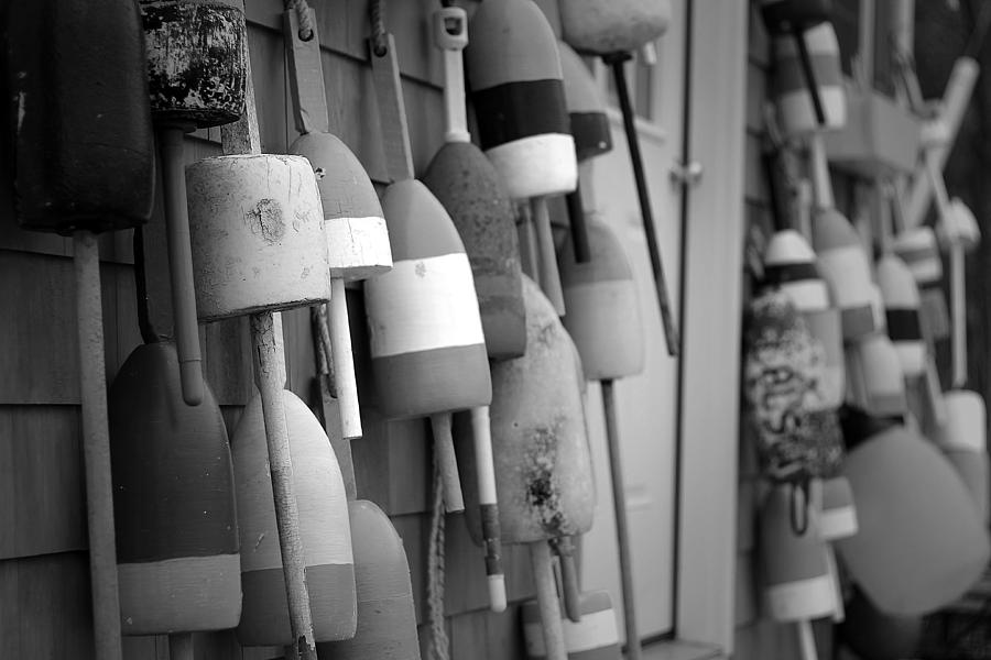 Buoys Photograph  - Buoys Fine Art Print