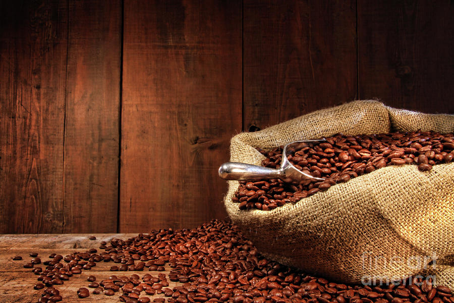 Burlap Sack Of Coffee Beans Against Dark Wood Photograph