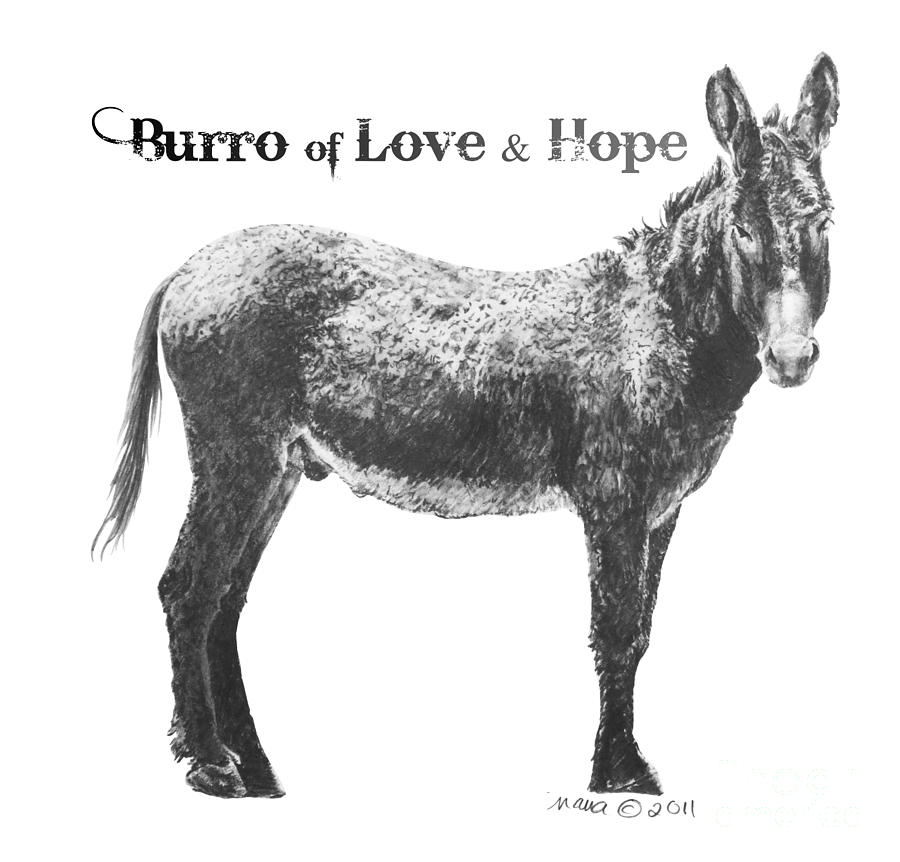 Burro Of Love And Hope Drawing  - Burro Of Love And Hope Fine Art Print