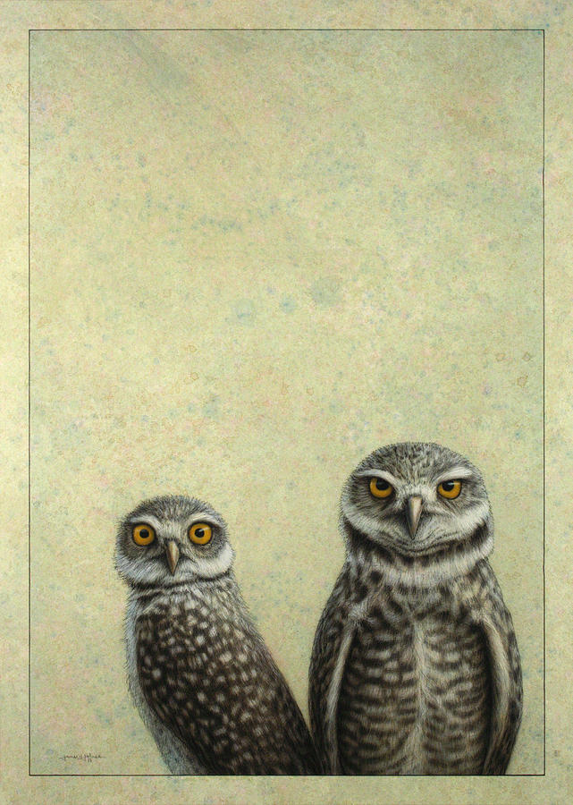 Burrowing Owls Painting  - Burrowing Owls Fine Art Print