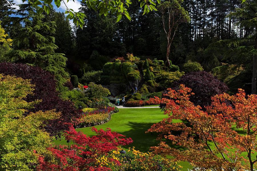 Butchart Gardens - Sunken Garden Photograph