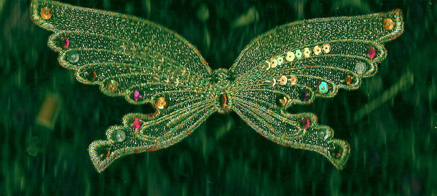Butterfly Fascination Mixed Media