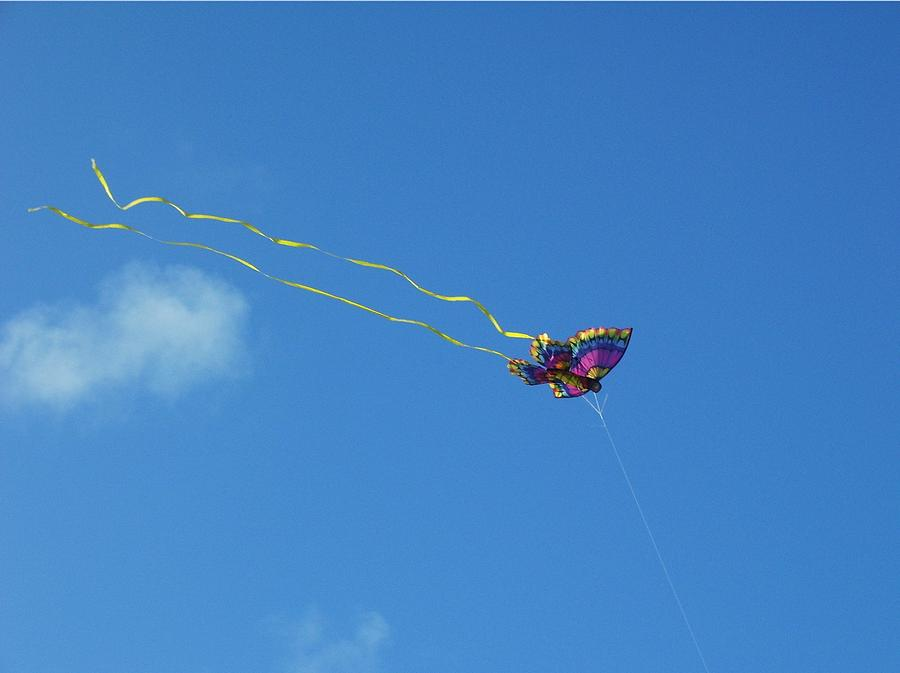 Blue Butterfly Flying In The Sky Butterfly Kite Flying ...