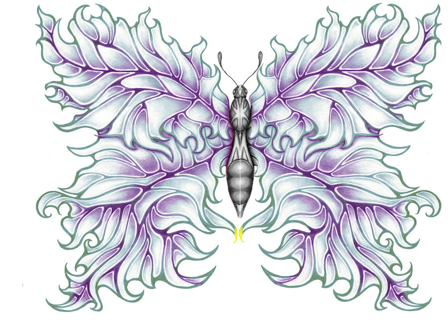Butterfly Tattoo 2 Drawing  - Butterfly Tattoo 2 Fine Art Print