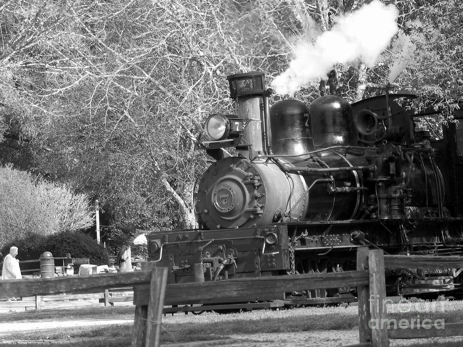 bw 33 - Roaring Camp Railroad  Photograph  - bw 33 - Roaring Camp Railroad  Fine Art Print