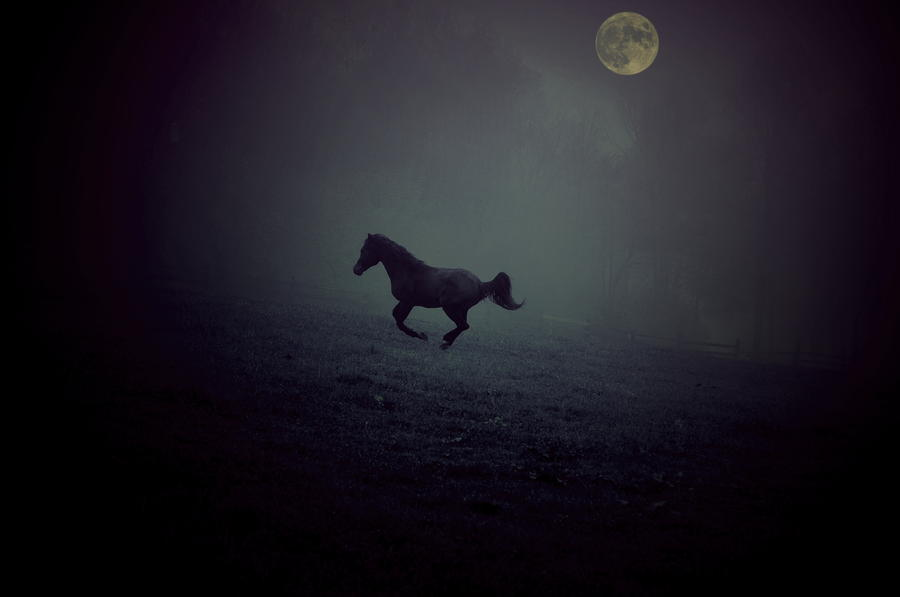 By The Moon Photograph  - By The Moon Fine Art Print