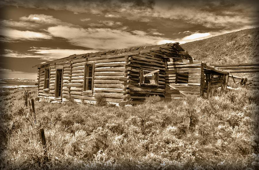 Cabin Fever Photograph