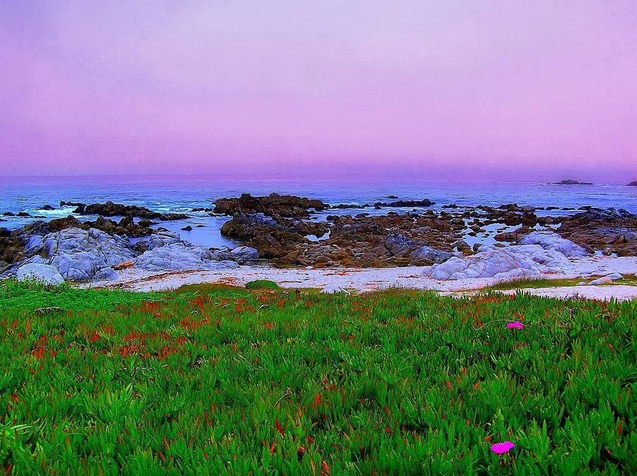 California Coast Photograph  - California Coast Fine Art Print
