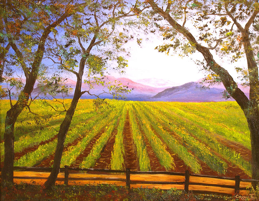 California Napa Valley Vineyard Painting  - California Napa Valley Vineyard Fine Art Print