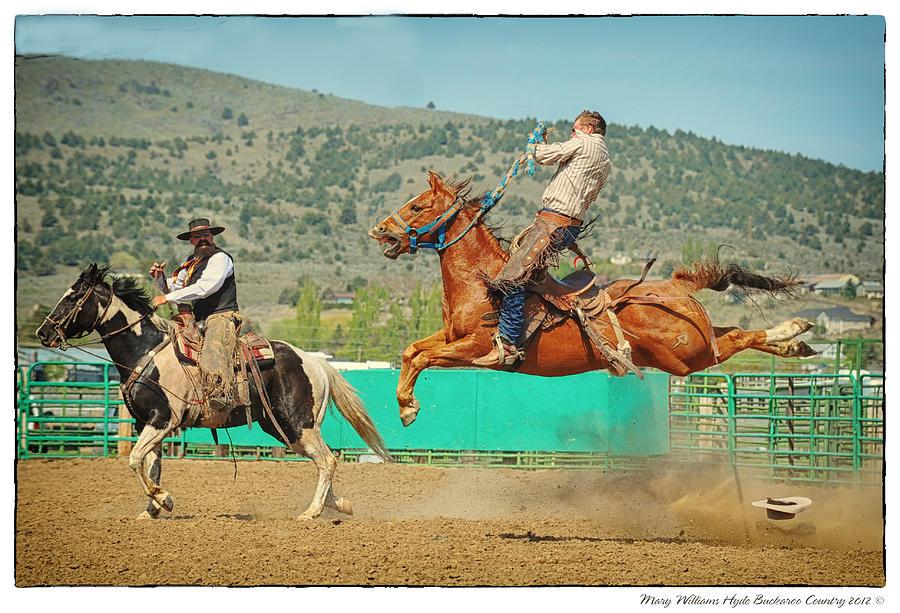 Ranch Bronc Pics