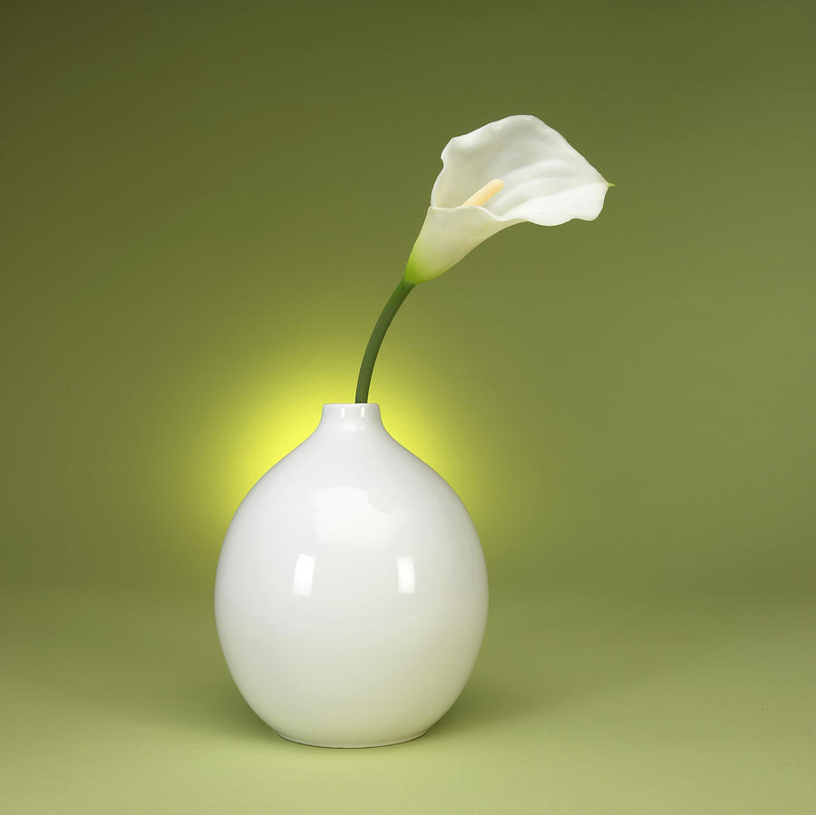 Calla Lily And Vase Photograph  - Calla Lily And Vase Fine Art Print