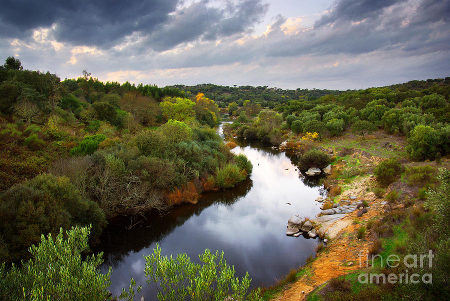 Calm River Photograph  - Calm River Fine Art Print