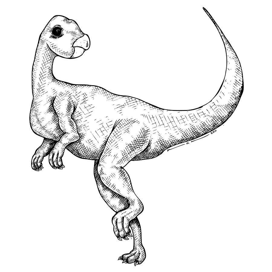 Calustra - Dinosaur Drawing