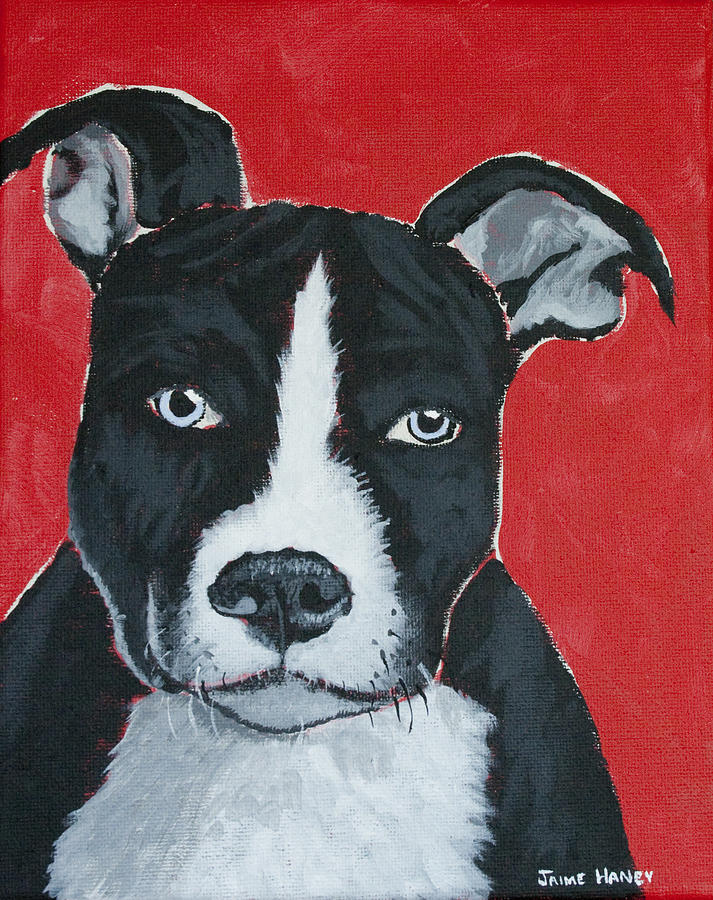 Pit Bull Terrier Painting - Can I Go Home With You by Jaime Haney