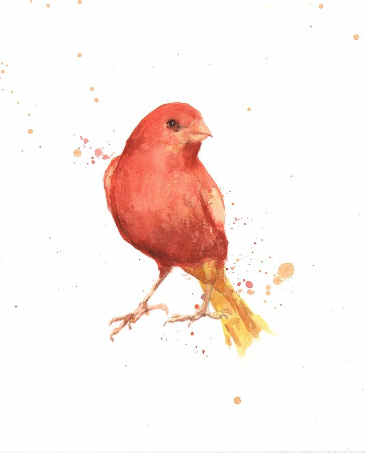 Canary Bird Painting  - Canary Bird Fine Art Print