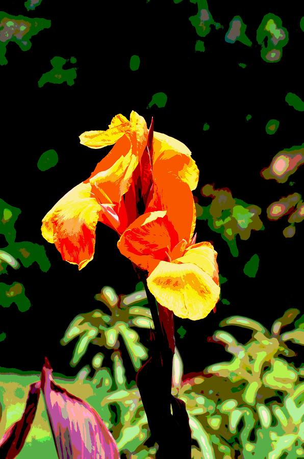 Canna In Summer Mixed Media