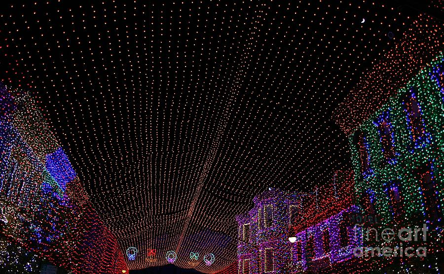 Art Photograph - Canopy Of Lights by Ronnie Glover