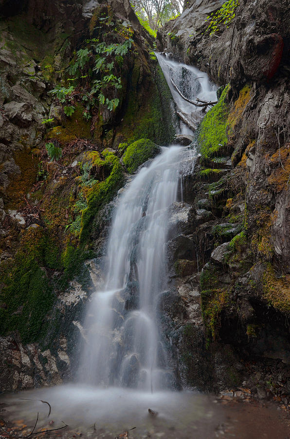 Canyon Falls - Big Sur Photograph  - Canyon Falls - Big Sur Fine Art Print