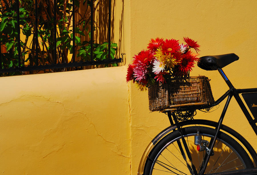 Cape Bike Photograph