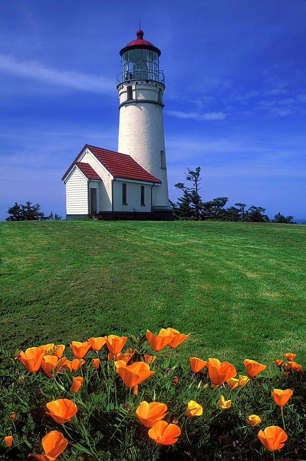 Cape Blanco Lighthouse Oregon Photograph  - Cape Blanco Lighthouse Oregon Fine Art Print