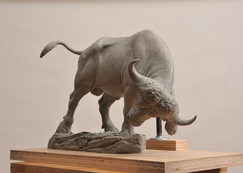Sculpture - Cape Buffalo by Jason B Matthews