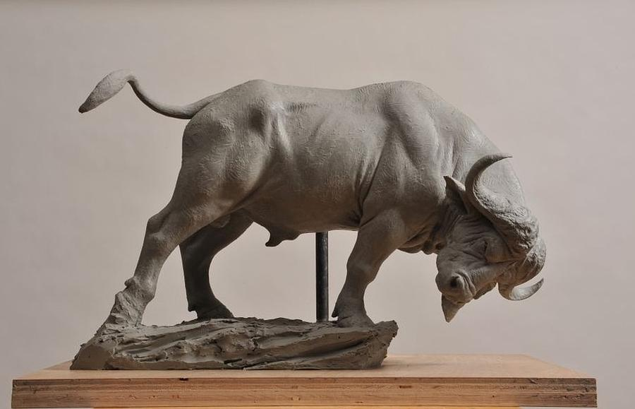 This Is A Series Called the Big Five. The Cape Buffalo Sculpture - Cape Buffalo by Jason B Matthews